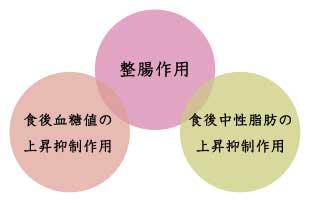 難消化性デキストリンの作用・副作用のイメージ